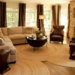 Rug Doctor Parts with Contemporary Living Room and  Curtains  Coffee Table  Built in Tv  Stone Fireplace  French Windows